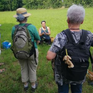 Ein Foto von der Wildpflanzenwanderung in Neckarweihingen. Drei Frauen auf einer Wiese sind zu sehen.