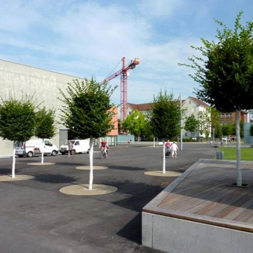 Aus dem Parkplatz ist nach der Umgestaltung einen betonierter Platz mit Sitzmöglichkeiten, einer Grünfläche und Baumpflanzungen geworden.